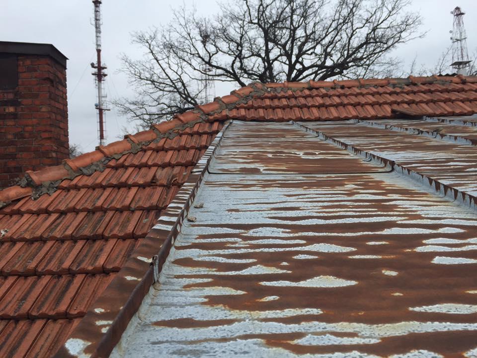 スギハラハウス・屋根上の状態と劣化具合1(池田大平撮影)